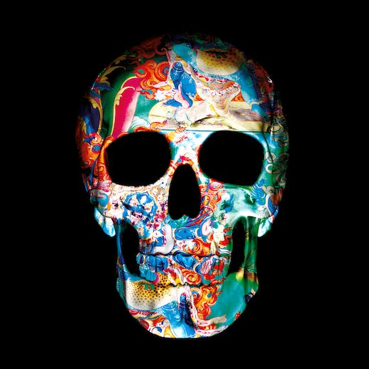 0019.Dimensions.of.the.Skull.II1498154206