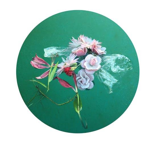 drownedflowers(1)1504079132
